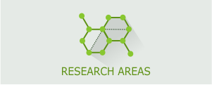Research Areas b