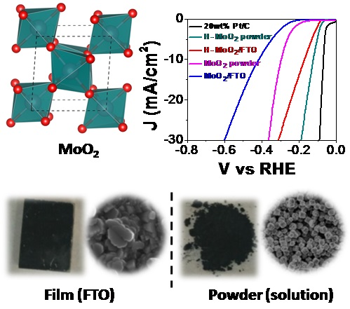 MoO2 nanostructures for Electrochemical Hydrogen evolution
