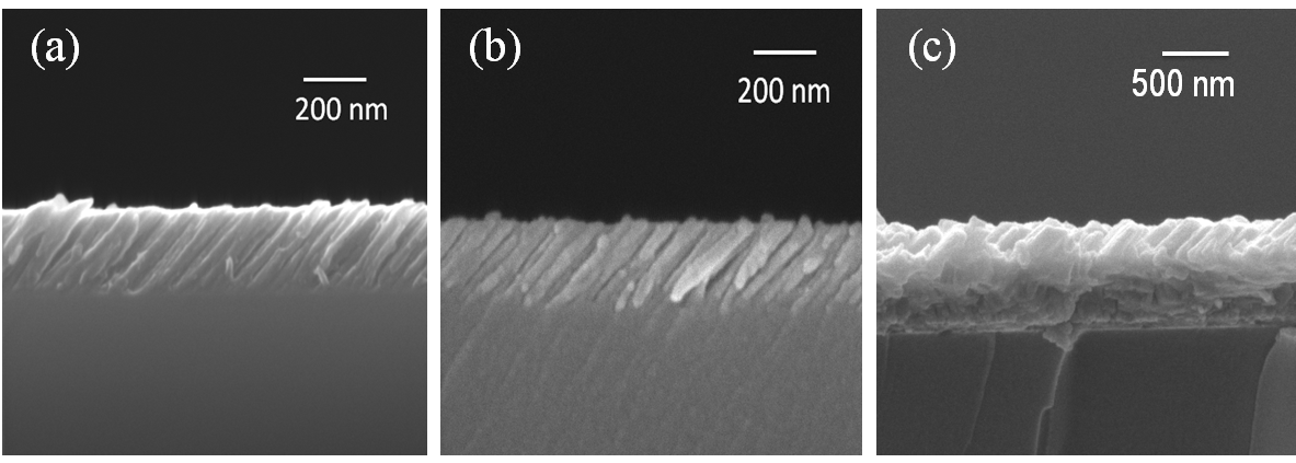 Structural properties and wettability of TiO2 Nanorods